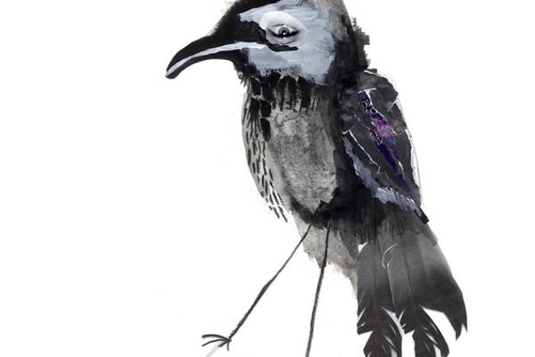 Illustration of a raven, created by Illustration degree student