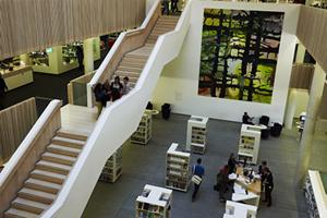 elevated view of the stairs and ground floor of the hive library