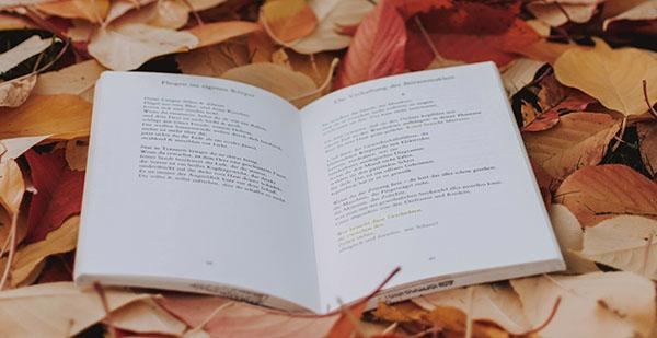 A poetry book is sitting on a bed of leaves