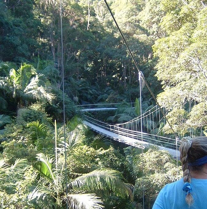 A shot of the bridge that leads into the camp in I'm a Celebrity get me out of here.
