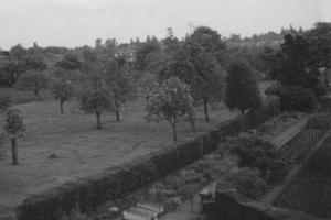 the grounds of Henwick campus in the 1950s