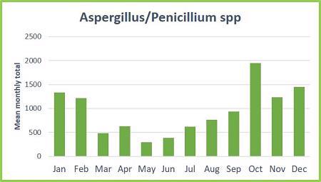 fungal spores aspergillus penicillium spp graph