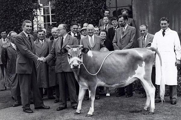 oral-history-ceremony-with-cow-university-of-worcester