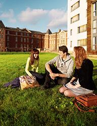 Students sit outside in the grass on a sunny day